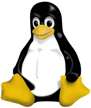 The Linux Penguin